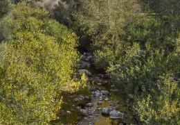 Río Guadalete en Zahara de la Sierra