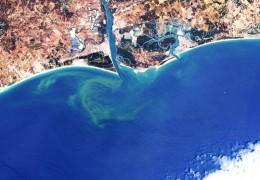 Imagen captada por el Sentinel-2 en la que se aprecia la presencia de algas en el Golfo de Cádiz./ESA